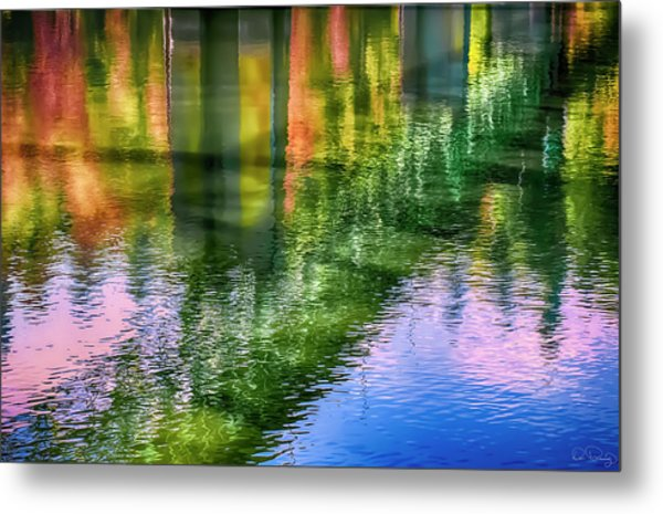 Metal Print featuring the photograph Autumn Span  by Dee Browning