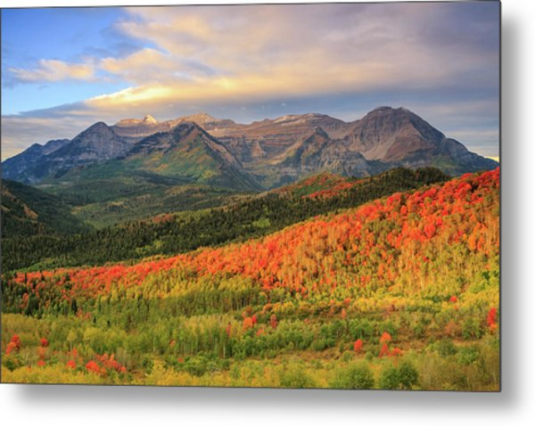 Autumn Splendor In The Wasatch Back. Metal Print
