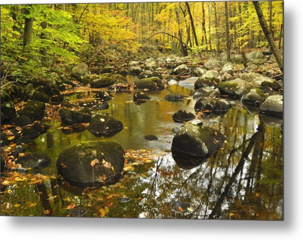 Autumn Stream Reflections Metal Print by Stephen  Vecchiotti