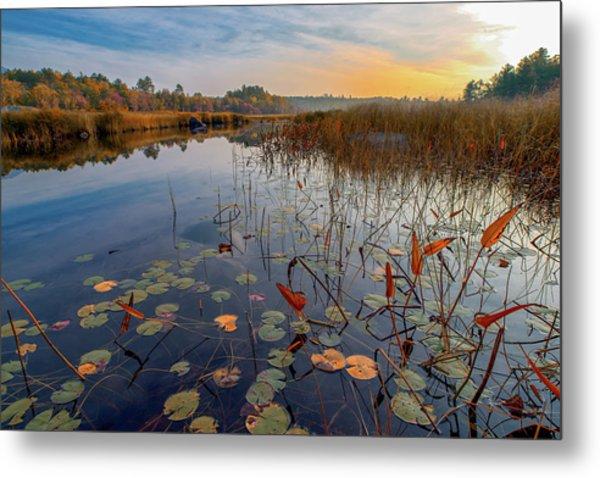 Autumn Sunrise At Compass Pond Metal Print