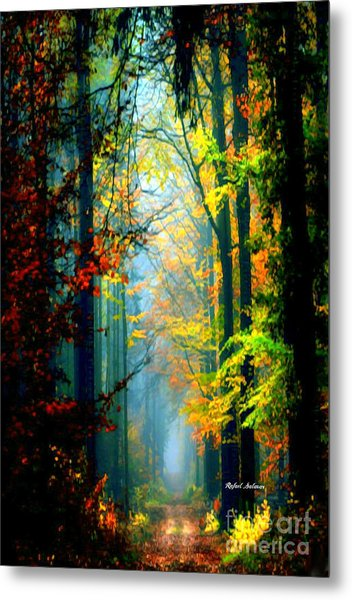 Autumn Trails In Georgia Metal Print