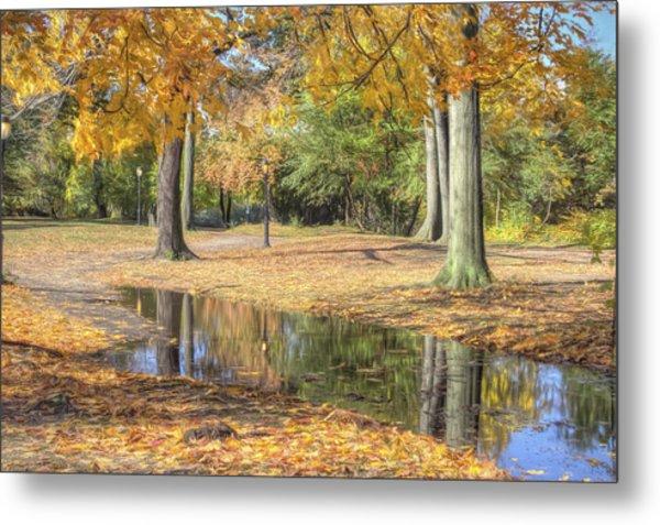 Autumn Tranquility Metal Print by Zev Steinhardt