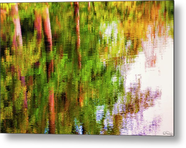 Metal Print featuring the photograph Autumn Trees Reflect In A Creek by Dee Browning