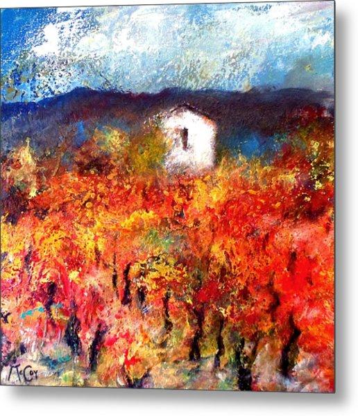 Autumn Vineyard Metal Print