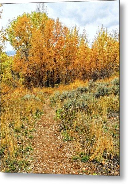 Autumn Walk Photo Metal Print