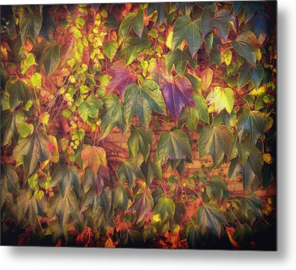 Autumnal Leaves Metal Print