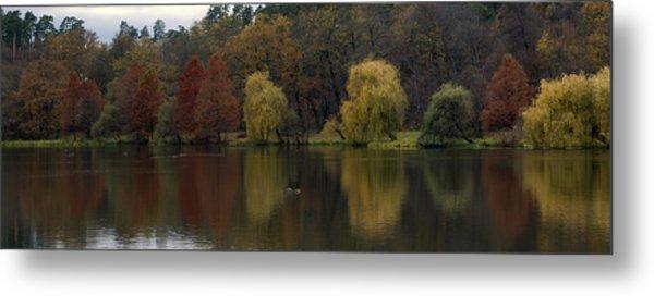 Autumnal Metal Print by Mihail Antonio Andrei