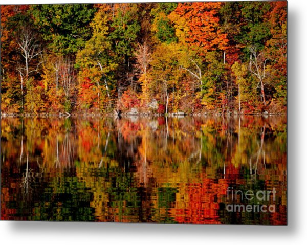Autumnal Reflections Metal Print by Andrea Simon