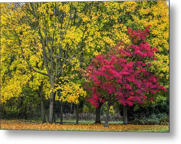 Autumn's Peak Metal Print