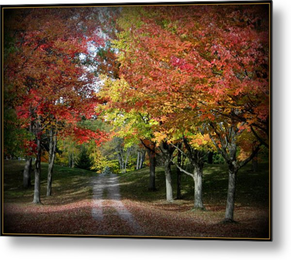 Autumn's Walk Metal Print by Trina Prenzi