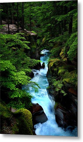 Avalanche Creek Waterfalls Metal Print