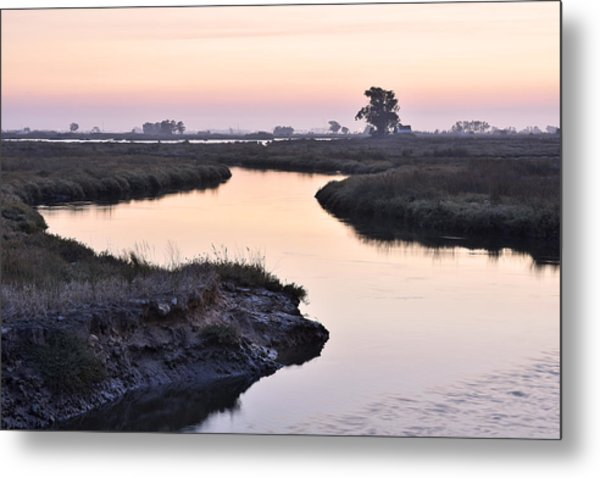 Twilight Marshland Metal Print