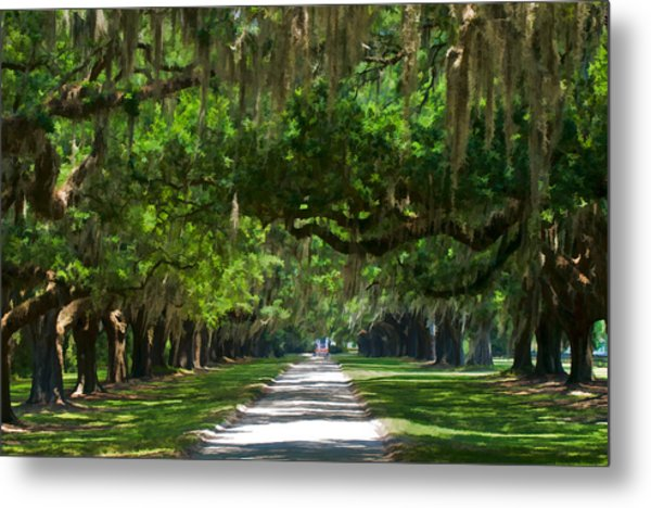 Avenue Of The Oaks At Boonville Plantation Metal Print