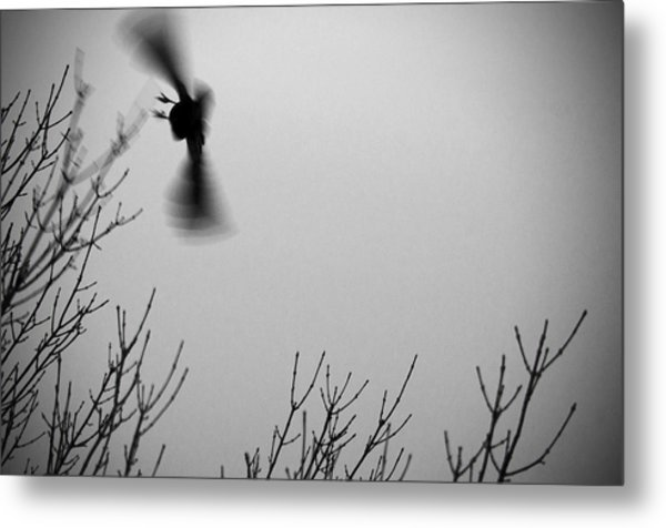 Avian Nightmare Metal Print