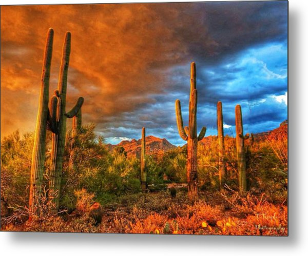 Awaitng The Monsoon Metal Print