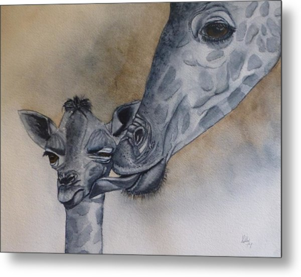 Baby And Mother Giraffe Metal Print