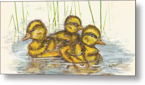 Baby Ducks For Ma Metal Print
