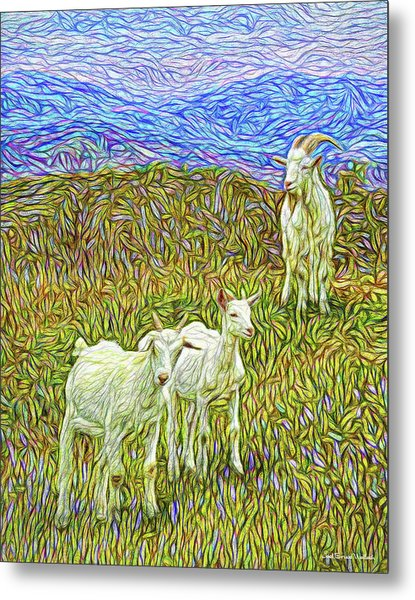 Baby Goats Of The New Dawn Metal Print