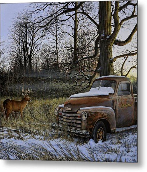 Back Forty Metal Print