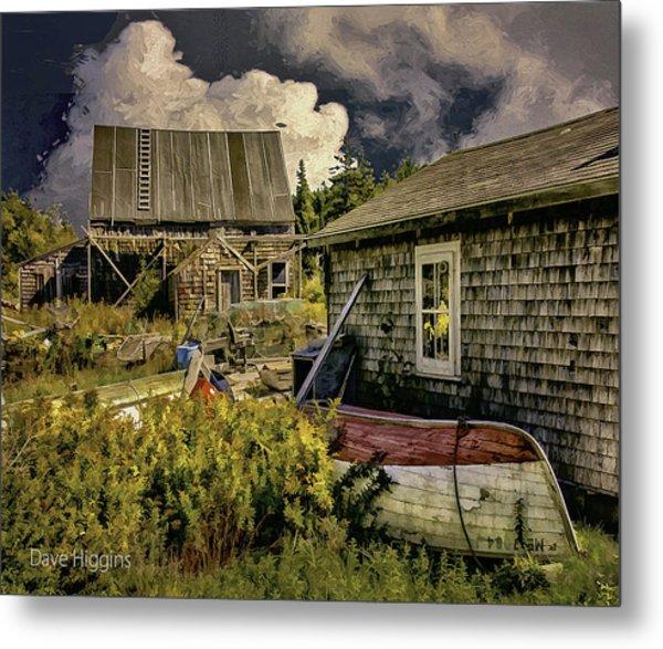 Back Yard, Stonington, Maine Metal Print by Dave Higgins
