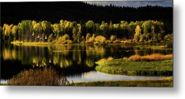 Backwater Blacks At Oxbow Bend Metal Print