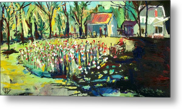 Backyard Poppies Metal Print