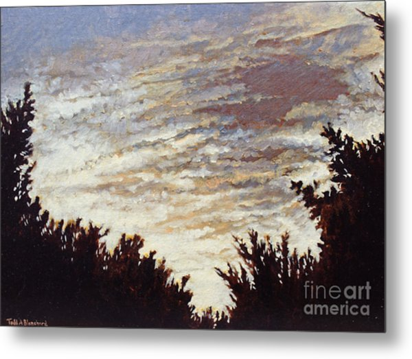 Backyard Sunset Metal Print