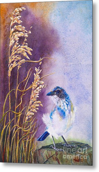 Bad Feather Day Metal Print by Jany Schindler