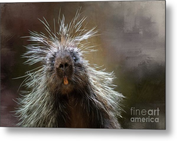 Bad Hairday Metal Print