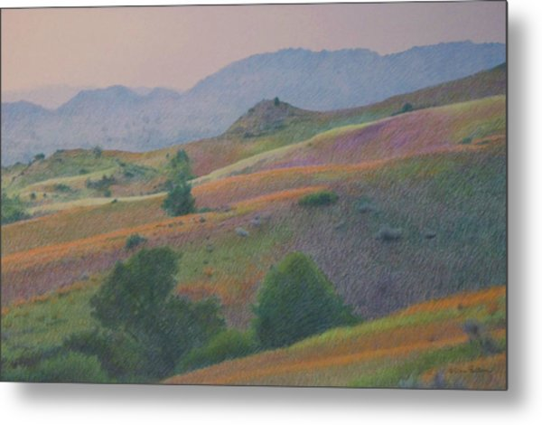 Badlands In July Metal Print