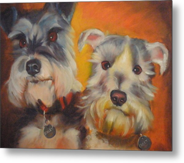 Bailey And Casey Metal Print by Kaytee Esser