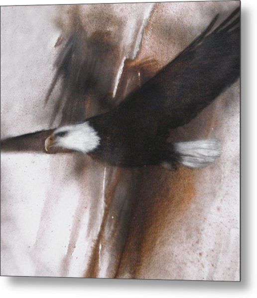 Bald Eagle Flight Metal Print