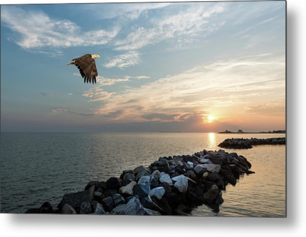 Bald Eagle Flying Over A Jetty At Sunset Metal Print