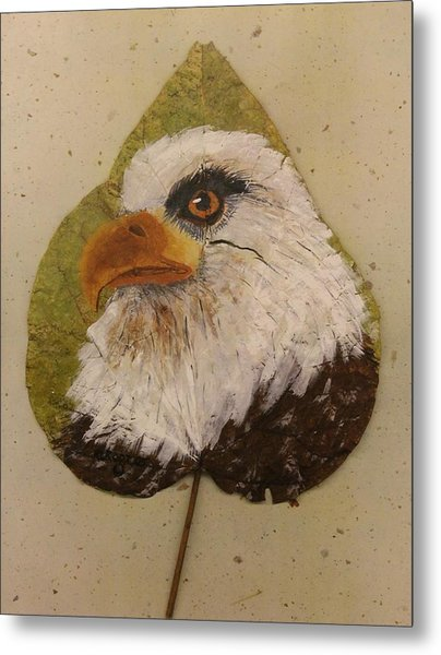 Bald Eagle Side Veiw Metal Print