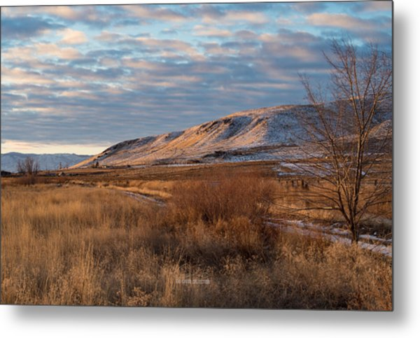 Bald Mountain At Dawn Metal Print