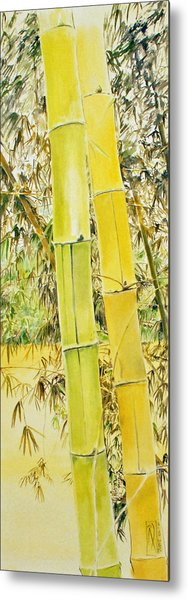 Bamboo Metal Print by Rainer Jacob