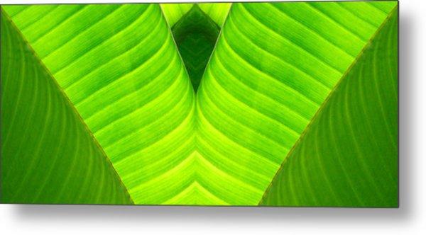 Banana Leaf Abstract 2 Metal Print