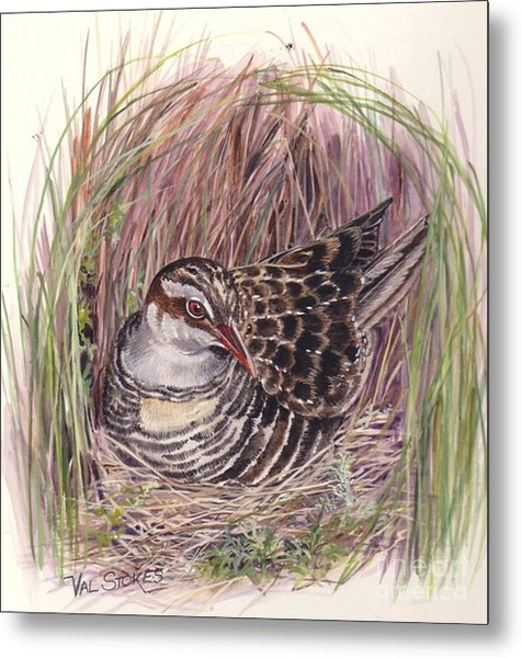 Banded Rail Metal Print by Val Stokes