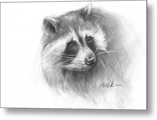 Bandit The Raccoon Metal Print