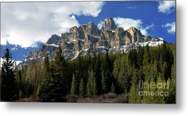 Banff - Castle Mountain Metal Print by Terry Elniski