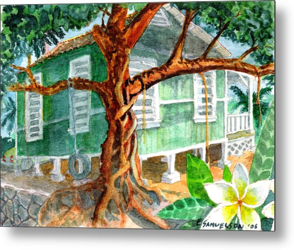 Banyan In The Backyard Metal Print