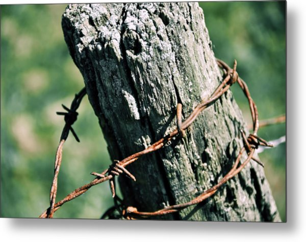 Barbed Wire Metal Print by JAMART Photography
