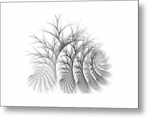 Bare Trees Daylight Metal Print