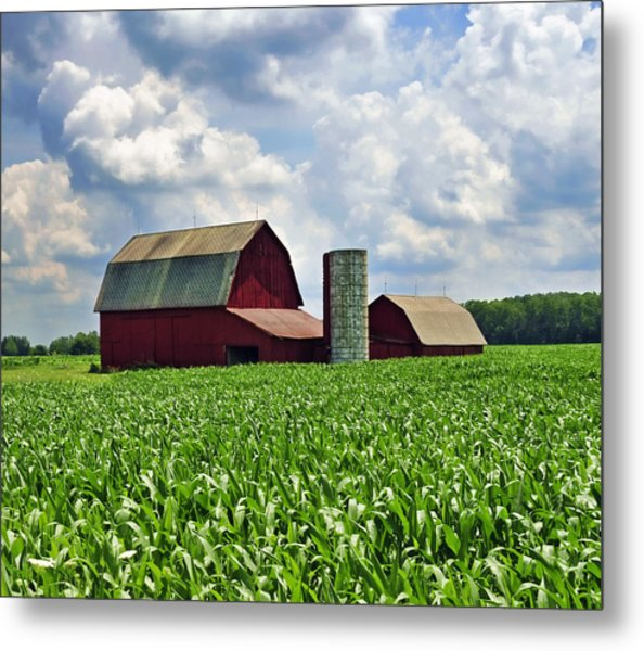 Barn In The Corn Metal Print