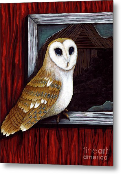 Barn Owl Beauty Metal Print