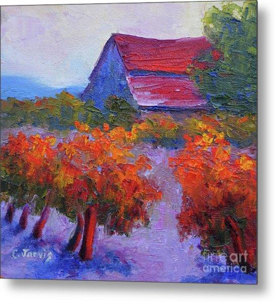 Barn Vineyard Autumn Metal Print
