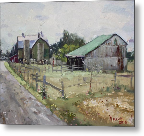 Barns And Old Shack In Norval Metal Print