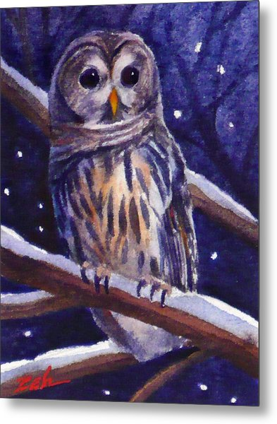 Barred Owl And Starry Sky Metal Print