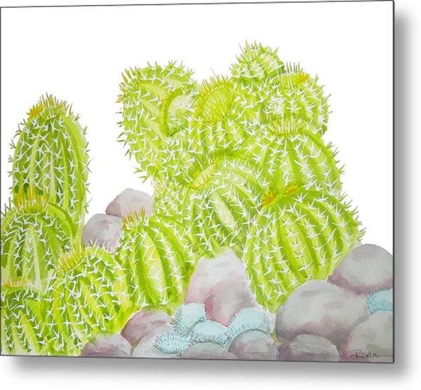 Barrel Cactus Metal Print