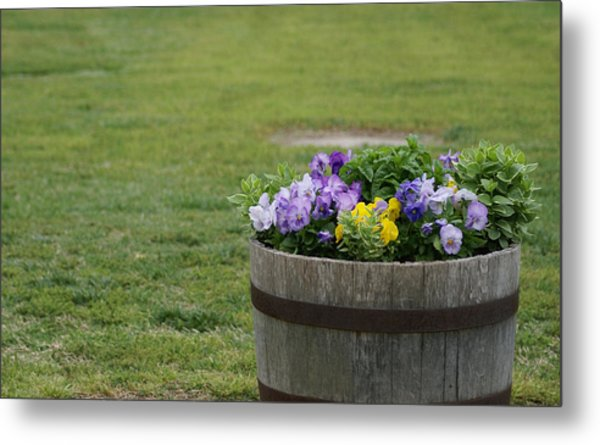 Barrel Of Flowers Metal Print